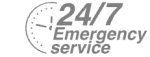 24/7 Emergency Service Pest Control in Chiswick, W4. Call Now! 020 8166 9746